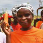 Biofortification: An Agricultural Investment for Nutrition. Photo: Eliab Simpungwe, HarvestPlus